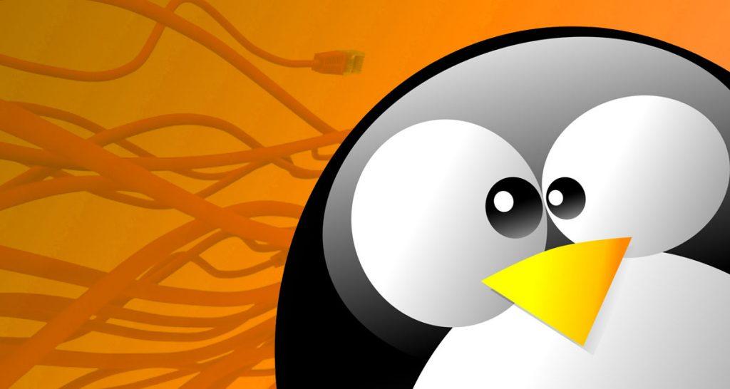 ddos-botnet-linux